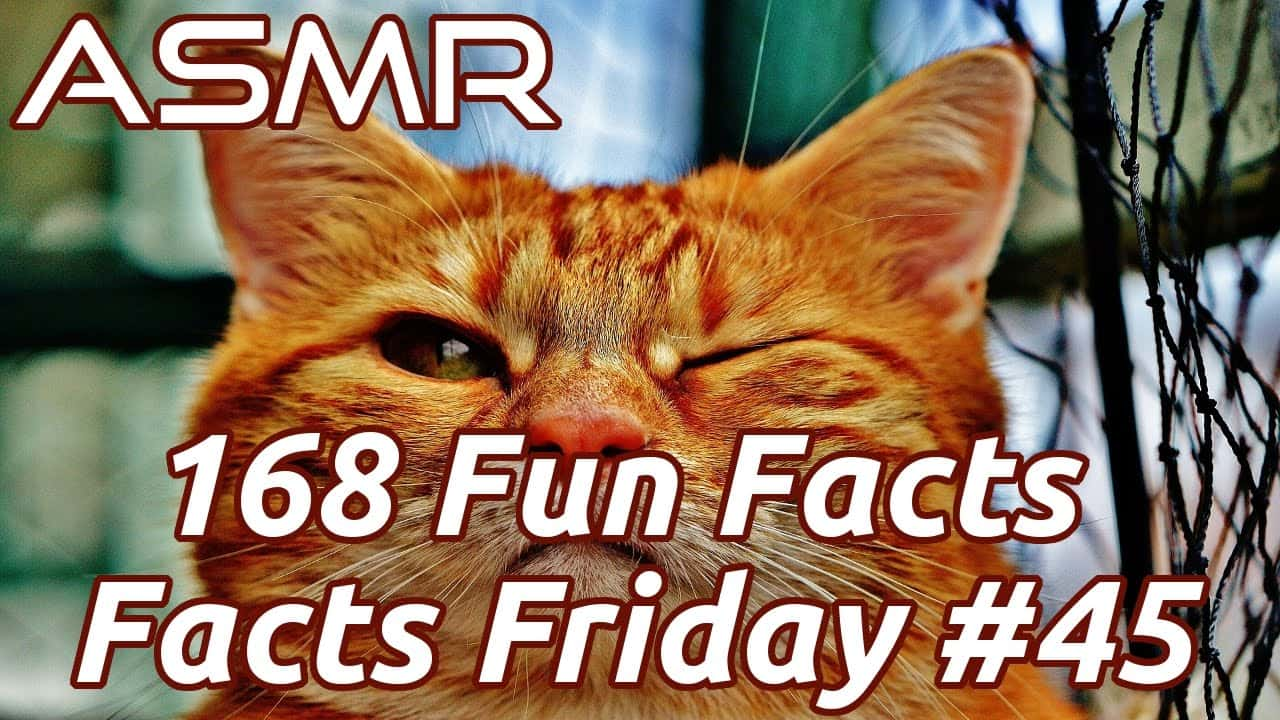 ASMR Fun Facts Ear To Ear Whispering